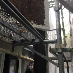 複雑にかけられた足場での作業は大変です。|神戸市須磨区でリノベーション工事 無添加住宅専門モスハウス田端